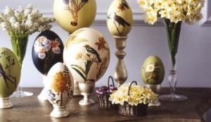eggs_crop